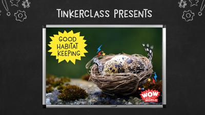Cover art for Tinkerclass (Week 3 Day 4): Improve & Retest